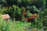Podzim v Řícmanicích 2013